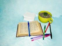 Un pequeño libro - diccionario, plumas coloreadas, una pila de las hojas de papel y un cactus en un pote amarillo en un fondo azu Imagen de archivo libre de regalías