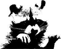 Un pequeño mapache dulce - ejemplo Fotos de archivo libres de regalías