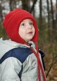 Un pequeño muchacho feliz con el sombrero rojo que juega en hojas Imágenes de archivo libres de regalías
