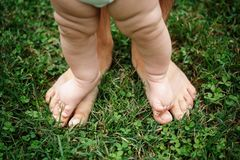 Un pequeño niño se coloca en los pies de su padre en el césped fotografía de archivo