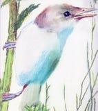 Un pequeño pájaro libre illustration