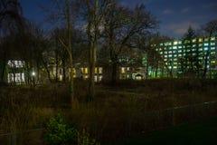 Un pequeño pedazo de los árboles y de los arbustos rodeados por los edificios en una ciudad, en la noche Imagen de archivo