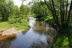 Un pequeño río, bancos rodeados por la vegetación de la primavera foto de archivo libre de regalías