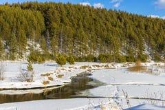 Un pequeño río en el campo Fotos de archivo