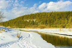 Un pequeño río en el campo Imagen de archivo libre de regalías