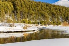 Un pequeño río en el campo Foto de archivo
