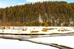 Un pequeño río en el campo Imágenes de archivo libres de regalías