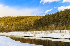 Un pequeño río en el campo Fotografía de archivo libre de regalías