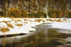 Un pequeño río en el campo Fotografía de archivo