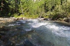Un pequeño río en las montañas de Altai Rusia Fotografía de archivo libre de regalías
