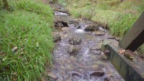 Un pequeño río que atraviesa un campo verde metrajes