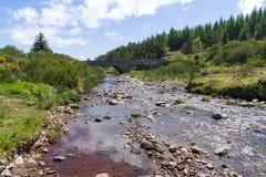 Un pequeño río que fluye debajo de un puente Imagen de archivo libre de regalías
