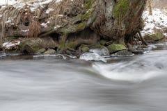 Un pequeño torrente en el invierno Un pequeño río en Europa Central imagen de archivo