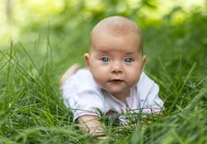 Un pequeño bebé Imágenes de archivo libres de regalías