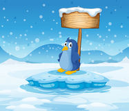 Un pequeño pingüino debajo del letrero de madera vacío Imagenes de archivo