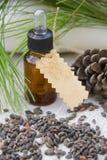 Un pequeño vidrio de aceite esencial del pino de Alepo Fotos de archivo libres de regalías