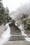 Un percorso ad orario invernale Fotografie Stock