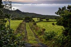 Un percorso alla costa Fotografia Stock