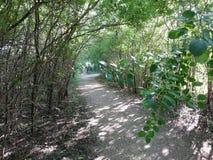 Un percorso attraverso la natura boscosa nel parco di Sertoma, Sioux Falls immagine stock libera da diritti