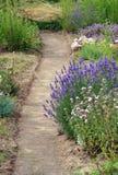 Un percorso del giardino Immagine Stock Libera da Diritti