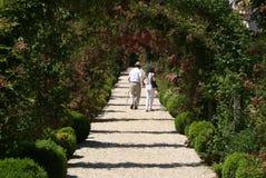 Un percorso del giardino fotografie stock