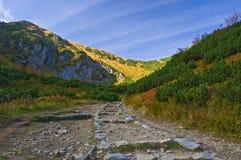 Un percorso della montagna Fotografia Stock Libera da Diritti