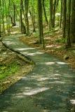 Un percorso di camminata accessibile di handicap - 2 immagini stock