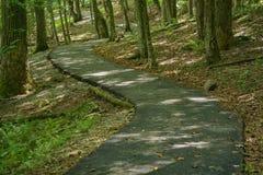 Un percorso di camminata accessibile di handicap - 3 immagine stock