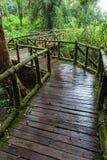 Un percorso di legno Immagini Stock Libere da Diritti