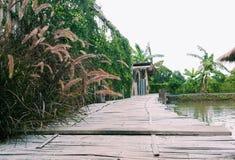 Un percorso lungo del ponte di legno circondato con gli alberi naturali della pianta e dello stagno immagine stock
