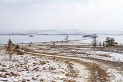 Un percorso pietroso fra le conifere al lago Baikal nell'inverno un chiaro giorno soleggiato su un fondo scenico della montagna Fotografia Stock Libera da Diritti