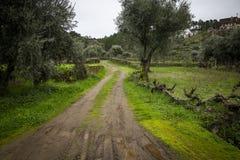 Un percorso rurale nel villaggio dello scisto di Barroca immagine stock