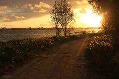 Un percorso stretto della spiaggia nell'ambito di luce solare di mattina Immagini Stock Libere da Diritti