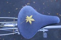 Un permesso giallo dell'acero sul sedile di bicicletta congelato durante l'autunno fotografia stock
