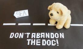 Un perro abandonado en el camino que lleva al mar Foto de archivo libre de regalías