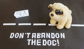 Un perro abandonado en el camino que lleva al mar Foto de archivo