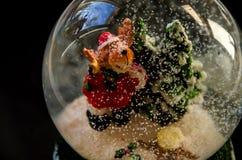 Un perro bajo la forma de Santa Claus se coloca en una bola en un fondo negro fotografía de archivo libre de regalías