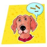 Un perro casero está soñando con huesos sabrosos Imágenes de archivo libres de regalías