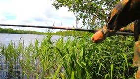Un pescatore dalla riva del lago sta pescando, pesca calma archivi video