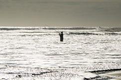 Un pescatore nell'oceano Fotografia Stock Libera da Diritti