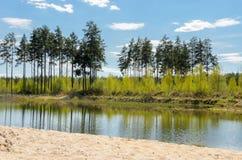 Un petit étang dans la campagne Image stock