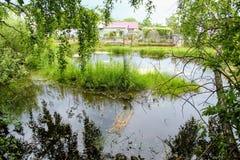 Un petit étang devant le farmer& x27 ; maison de s Photo libre de droits
