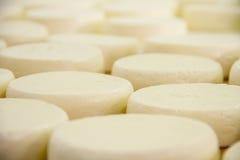 Un petit animal de fromage placé par travailleur en plastique Photos stock