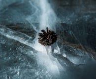 Un petit cône de pin se repose confortablement sur une fente de glace sur un lac congelé photos stock