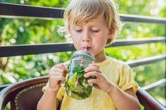 Un petit garçon boit l'eau avec la menthe et la chaux Buvez plus d'eau c Photographie stock