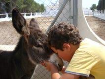 Un petit garçon et un âne Photographie stock
