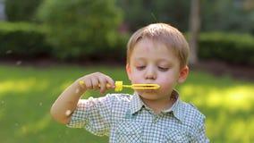 Un petit garçon mignon jouant avec des bulles de savon en parc vert au coucher du soleil clips vidéos