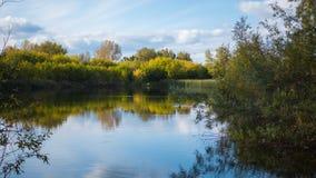 Un petit lac en parc, les arbres de jaunissement le long du rivage La réflexion du ciel et des arbres dans l'eau du lac Image stock