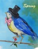 Un petit oiseau dans un chapeau Image stock