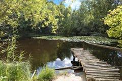 Un petit pilier en bois de solide ouvre une session un étang d'été Image libre de droits